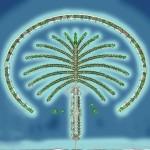 Palm Island Bird's-eye view